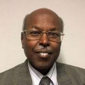 Dr. Adil Dafa'Alla, Specialist Member, Aero Data for Loads, Airbus UK Ltd, UK